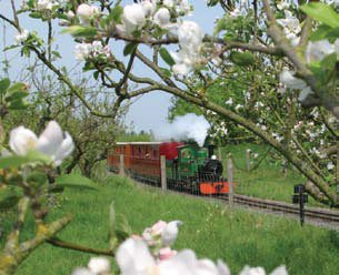 blossom-train.jpg